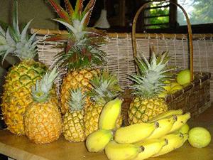 Fruits of Kauai